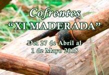 Las Fiestas de la XI Maderada de Cofrentes